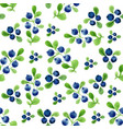 watercolor seamless pattern with berries and vector image