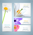 Flower blossom templates design vector image