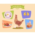 Farm animal and products made out of them Chiken vector image