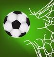 Sport Soccer vector image