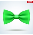 Realistic green bow tie vector image