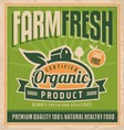 Retro farm fresh food concept vector image vector image