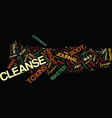 Master cleanse journal weight loss success vector image
