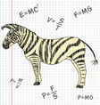 Zebra in a school notebook vector image