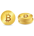 Bitcoin Symbols vector image vector image