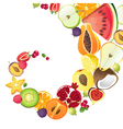 Bright background with fruits vector image vector image
