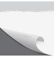 Bent Paper Corner Retro Cardboard Torn Papers vector image