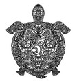 patterned turtle on white vector image
