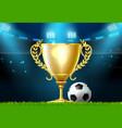 soccer football trophy prize award on stadium vector image