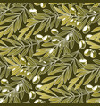 graphic olive pattern vector image