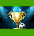 soccer football trophy prize award on stadium vector image