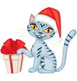 Winter tabby cat with a gift vector image vector image
