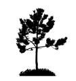 Tree Silhouette Isolated on White Backgorund vector image vector image