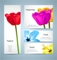 Tulip and Hibiscus floral design vector image