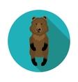 flat icons bear vector image