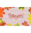 Maple color fall leaves pumpkin bat halloween vector image