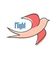 Nimble pink swallow in flight vector image vector image