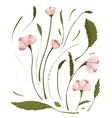 Spring Flowers Collection vector image vector image