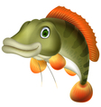 bass fish cartoon vector image