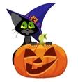 Pumpkin and cat Halloween vector image