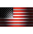 Black Flag American vector image vector image