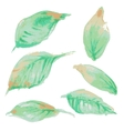 watercolor leaf design vector image vector image