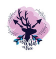 branches with deer animal and arrows vector image