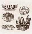 digital detailed line art bakery vector image