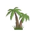 Two Palm Trees Jungle Landscape Element vector image