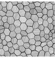 Abstract hand drawn honeycomb vector image vector image