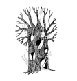 Magic Tree and hares vector image