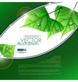 Eco Green Background With Leaves Eps 10 vector image