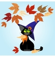 Black cat in a lilac hat Autumn leaves vector image