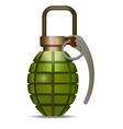 grenade - vector image