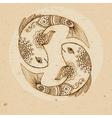 Pisces vector image