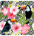 Tropical Birds and Flowers Geometric Background vector image