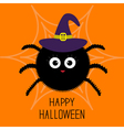 Cute cartoon fluffy spider on the web Witch hat vector image