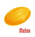 Melon fruit isolated icon for food design vector image vector image