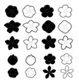 white and black flowers on a white background vector image