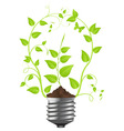 floral bulb vector image vector image