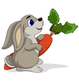 cute rabbit cartoon holding carrots vector image