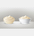 mayonnaise sour cream vector image