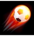 Soccer Ball on Fire vector image
