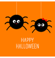 Two hanging spider insect family couple Boy Girl vector image