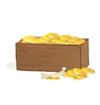 wooden treasure chest vector image