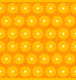 orange fruit seamless pattern texture vector image