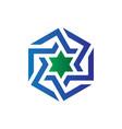 hexagon star business logo vector image