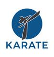 martial arts design vector image
