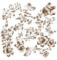 Vintage design flower elements vector image