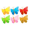 wild butterfly with different color wings vector image